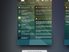 chameleon_launcher_beta-02