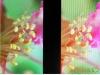 displayvergleich-xperia-s-vs-galaxy-nexus-note-13